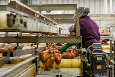 linia produkcyjna czyszcząca produkty rolne